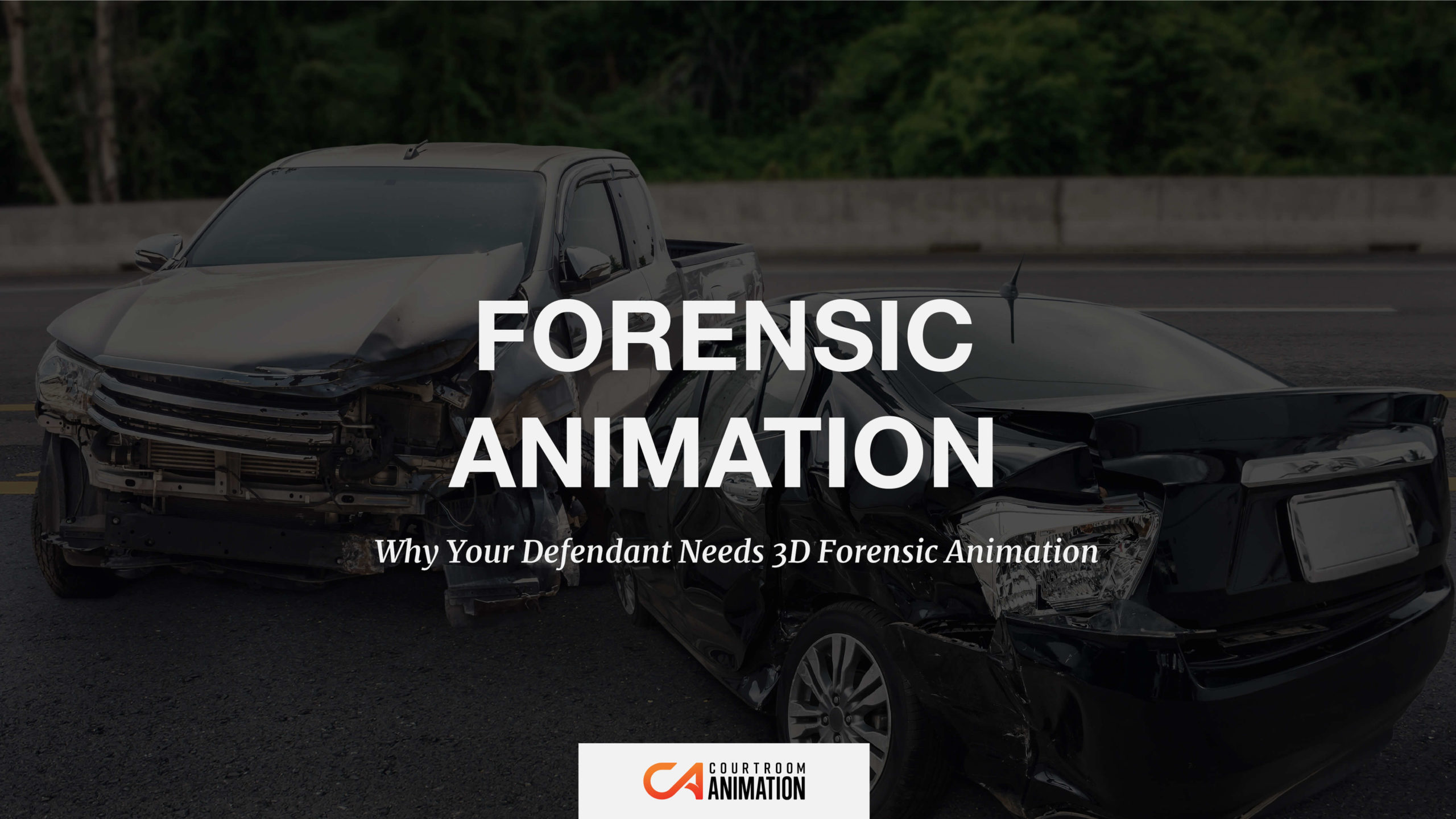 3D forensic animation for defendant cases